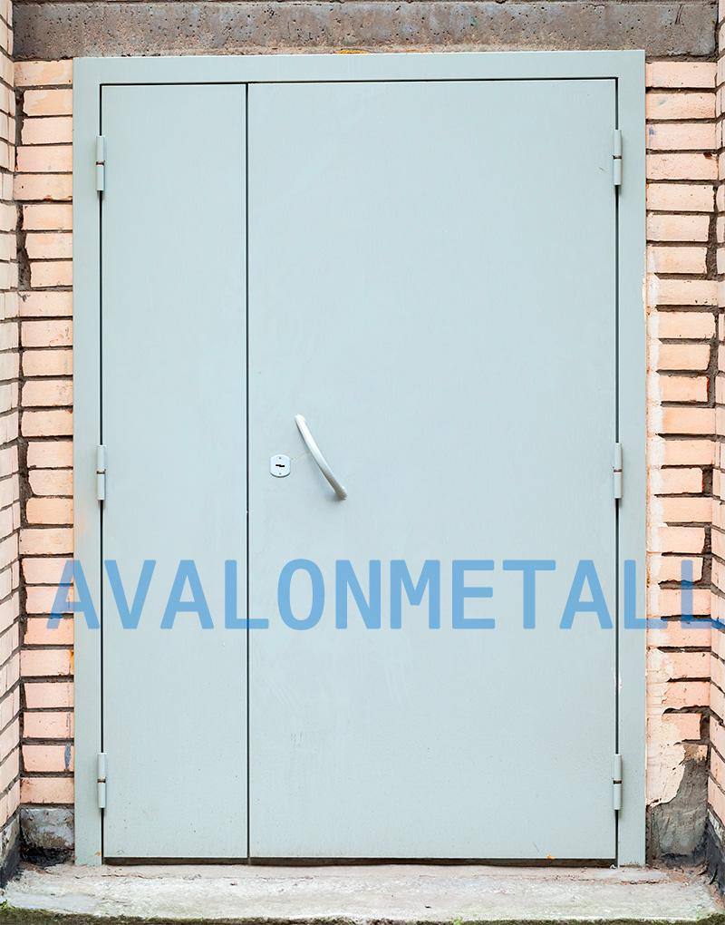двойные двери из металла